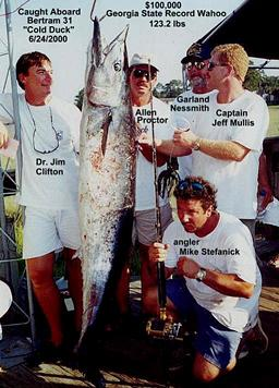 Team Cold Duck Catches Georgia State Record Wahoo - 123.2 lbs.