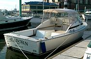 """Seaborn"" - Owned by Rick Born, Annapolis, MD"